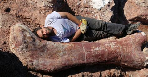 Scientists discover largest dinosaur ever to have walked