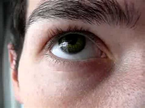 New Freshlook Color blends Gemstone Green Color Contact